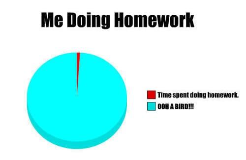 why i didn't do my homework jokes